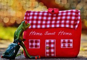 Szybki remont domu